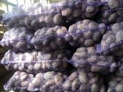 Семенной картофель сортов украинской и зарубежной селекции