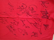 Футболка сборной Испании по футболу с автографами