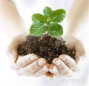 Куплю гербициды,  фунгициды,  инсектициды Чернигов